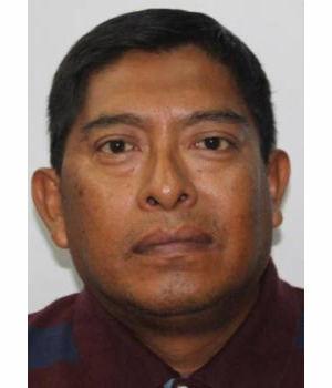 ARMANDO HUAMAN TASAYCO