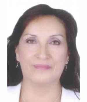 DINA ERCILIA BOLUARTE ZEGARRA