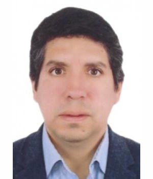 ELMER GUILLERMO ARCE ORTIZ