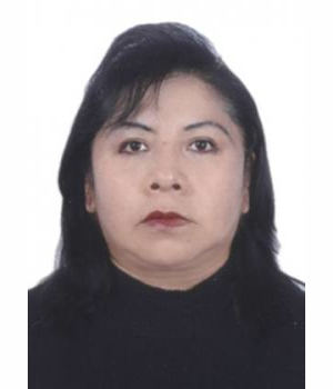 TERESA GLADYS RODRIGUEZ MAMANI