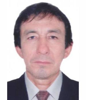 VICTOR MARDONIO DEL CASTILLO REATEGUI