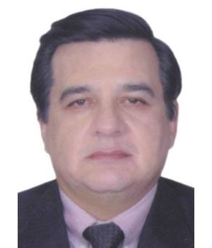 ELVIS DAVID DELGADO BACIGALUPI