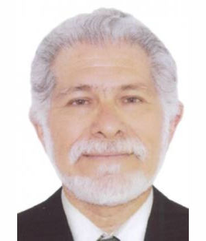 CARLOS MAXIMO CHAMOCHUMBI BARRUETO