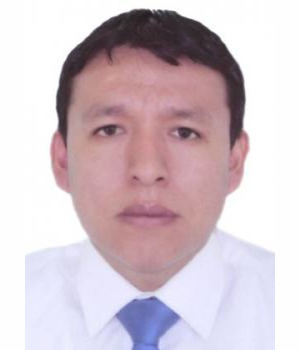 DAVID ROLANDO QUISPE MARTINEZ