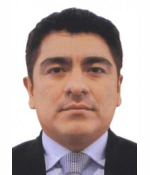 IVAN RICARDO RIVADENEYRA MEDINA