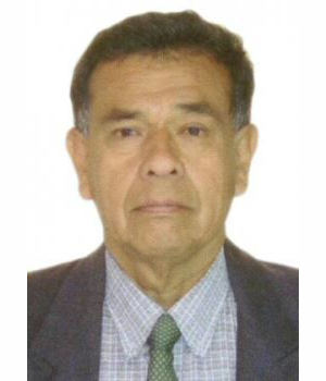Candidato LUIS ORLANDO UCEDA MAGALLANES